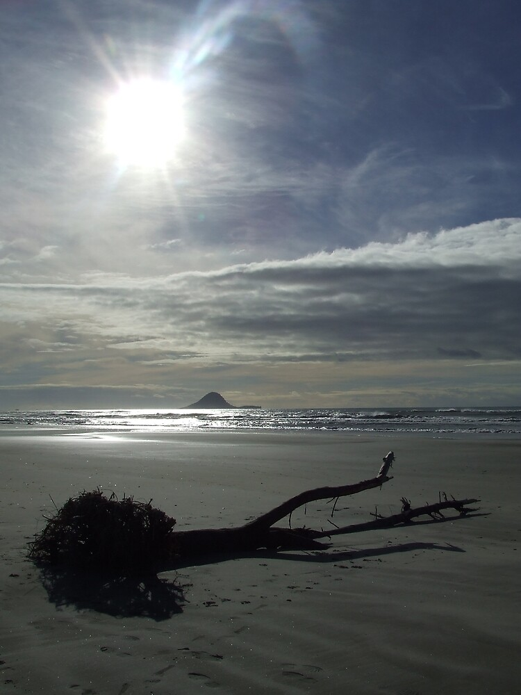 Washed Up, Ohope Beach, New Zealand by Katherine Wiles
