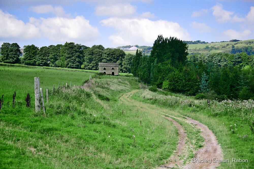 """""""Rural Path"""" by Bradley Shawn  Rabon"""
