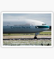 Cathay Pacific 777 Nose Shot at Manchester Sticker