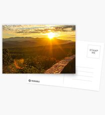 Fall Foliage  Postcards