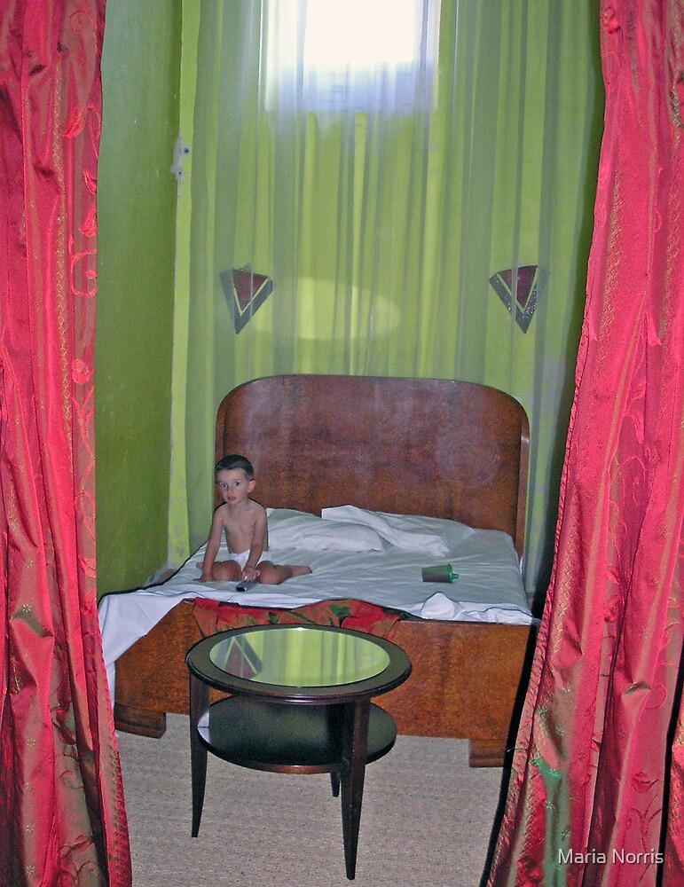 Billy in Arles Hotel - France by Maria Norris