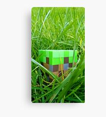 Minecraft-dirt Canvas Print