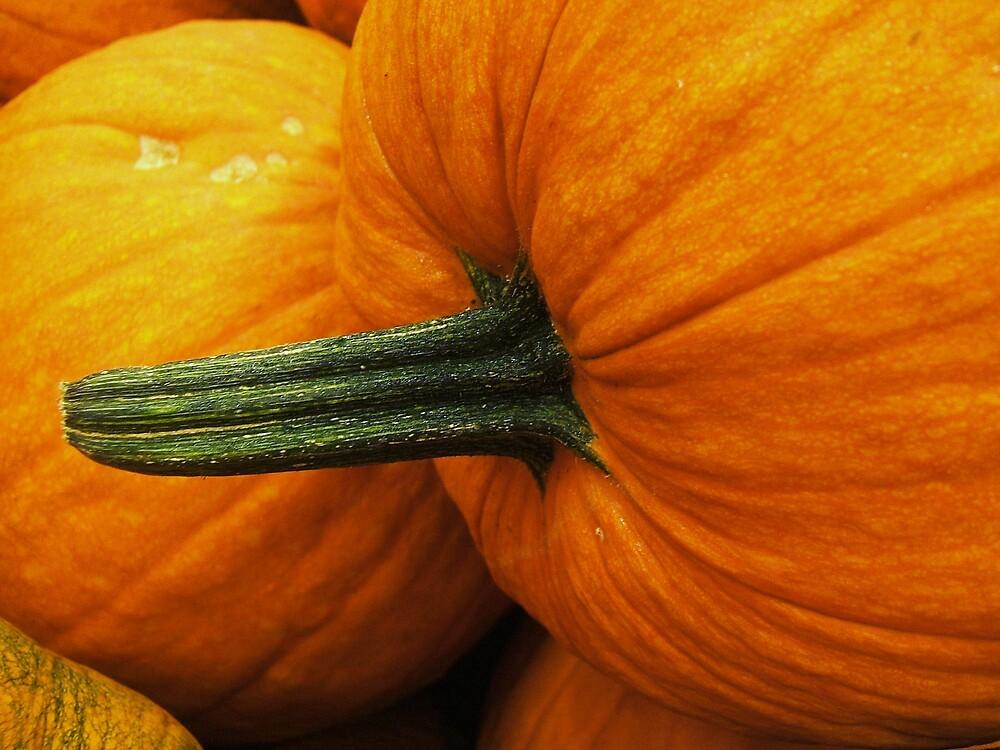 Green and Orange by Barbara Morrison