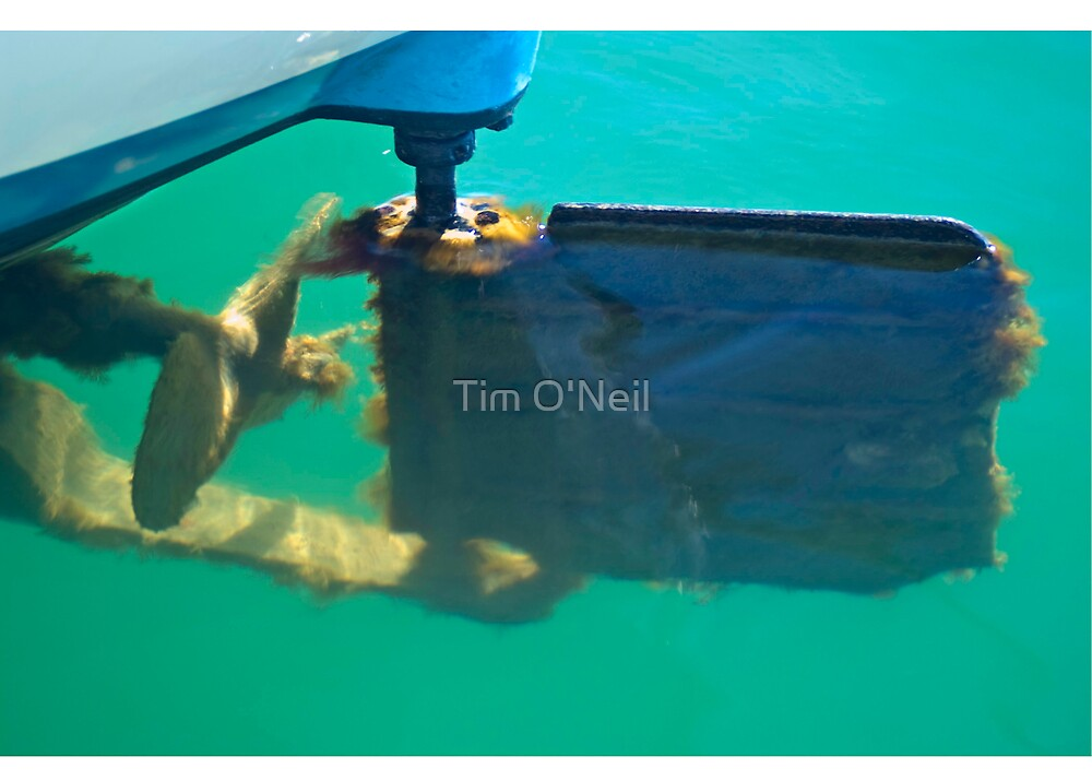 What Lies Beneath the Surface by Tim O'Neil