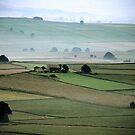 """Misty Morning in Hope Valley"" by Bradley Shawn  Rabon"