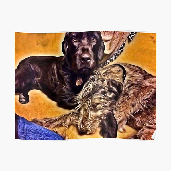MY COCKER SPANIEL Watercolor Print by Kevin Clifford