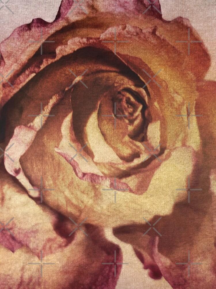 Rose in Time - Flower Lovers - Vintage Dusty Pink Rose Art by OneDayArt