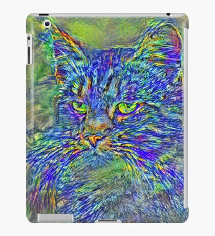 Artificial neural style Post-Impressionism cat iPad Case/Skin
