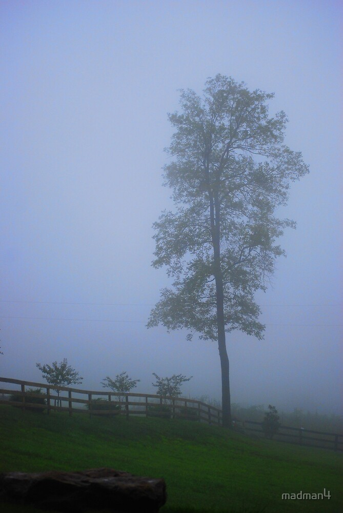 Foggy Mountain by madman4