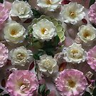 Rose Circles   by Alison Lee Cousland
