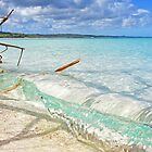 Platypus Bay Outlook by Oceansoul  Photografix - Susie Thomspon
