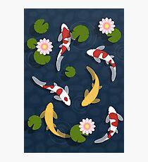 Japanese Koi Fish Pond Photographic Print