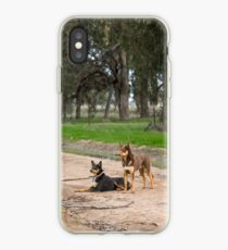 Two Young Kelpie's ....... iPhone Case