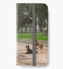 Two Young Kelpie's ....... iPhone Wallet/Case/Skin