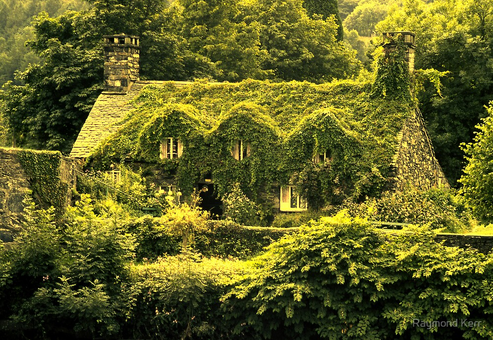 In the green (Llanrwst) by Raymond Kerr