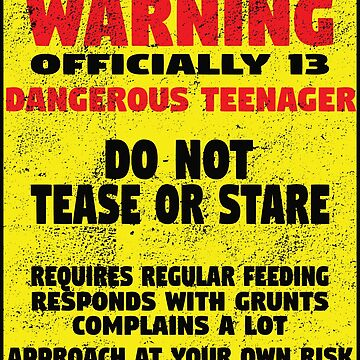 13th Birthday Funny Design - Warning Officially 13 Dangerous Teenager  by kudostees