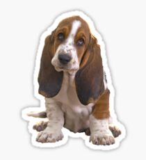 Basset Hound Portrait Art and Gifts Sticker