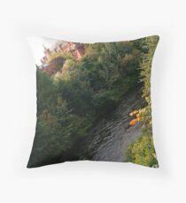 Kelvingrove Throw Pillow