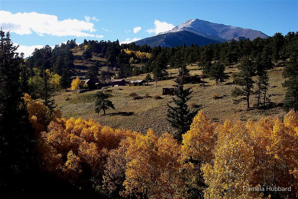 Rocky Mountain Farmland by Pamela Hubbard