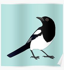 Magpie vector Poster