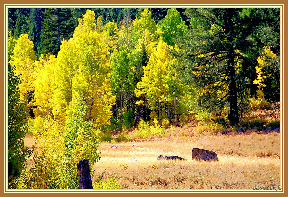 Fall Colors by davesdigis