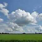 Landscape of Lower Saxony by Circe Lucas