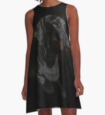 BLACK DACHSHUND ON BLACK A-Line Dress