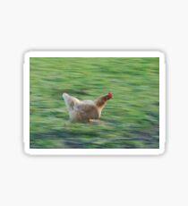 chicken gtg meme  Sticker