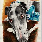 Desmond The Greyhound by Andrew Ledwith