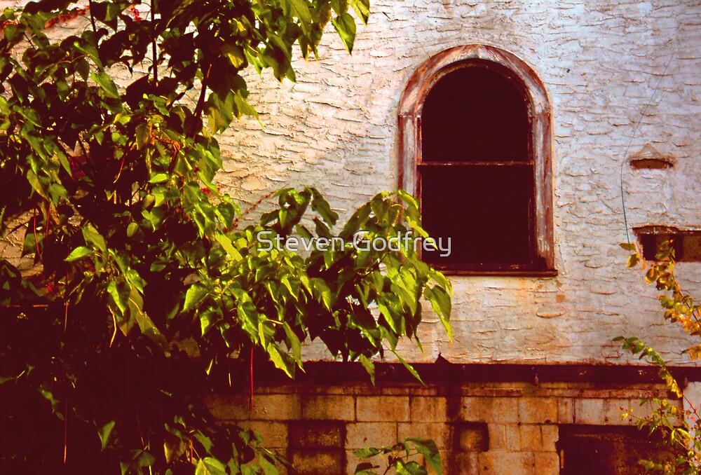 Evergreen Social Club - Window by Steven Godfrey