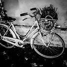 The Dream Bike #art #photography #dream #bicycle by Jacqueline Cooper