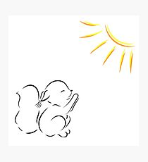 drawing of squirrel pulls legs to the sun Photographic Print