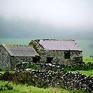 """""""Old Barn"""" by Bradley Shawn  Rabon"""