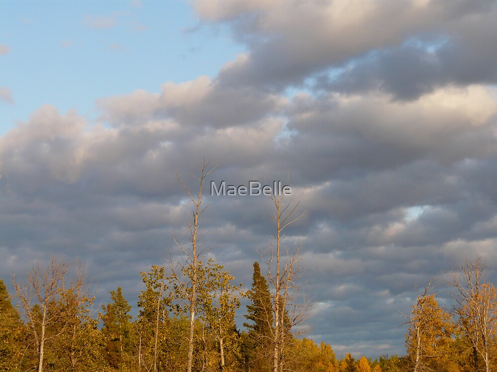 Clouds and Autumn Trees by MaeBelle