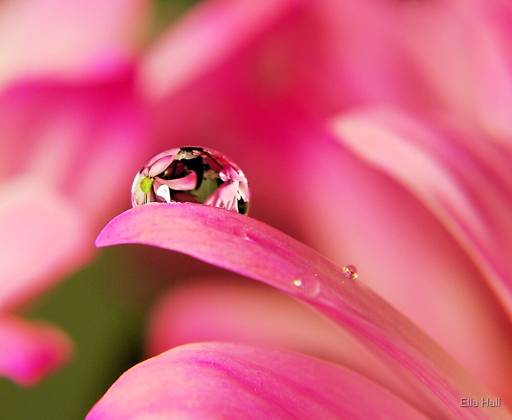 PINK Collection for the Cure - Reflecting Tears  by Ella Hall