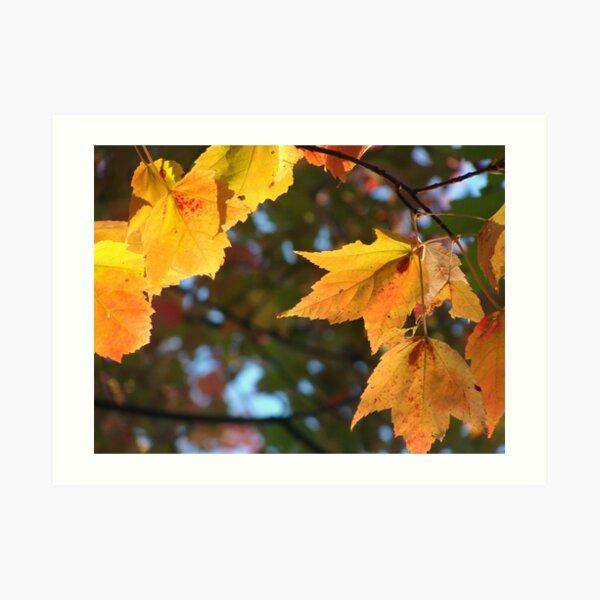 Delicious Autumn Art Print