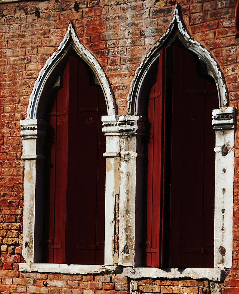 windows from Venice by Susan6110