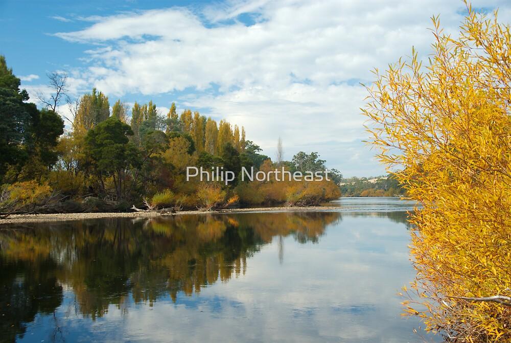 Derwent River in Autumn by Philip Northeast