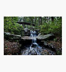 Garvan Gardens, Millsap Canopy Bridge Falls Photographic Print