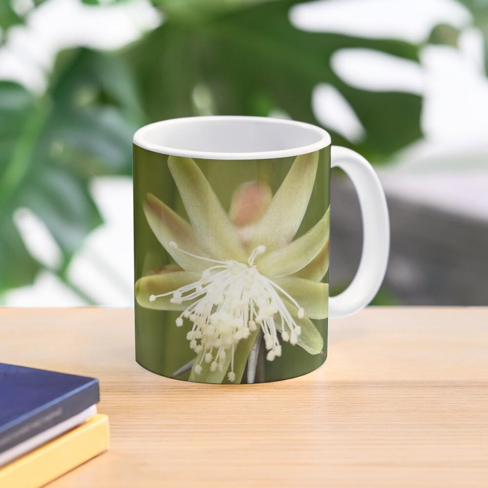 White Cactus flower Mug