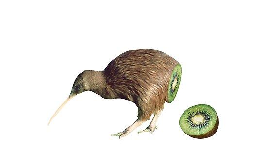 A digital image of half bird and half kiwi fruit