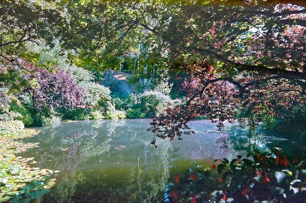 Pool in Sunshine, Butchart Gardens, BC, Canada by Priscilla Turner