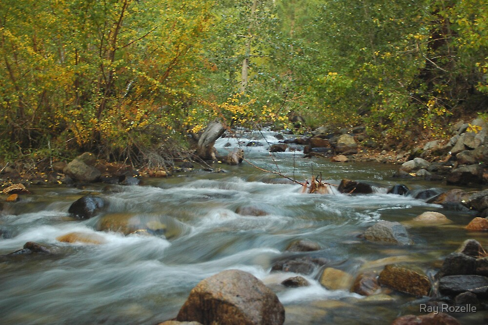 Big Pine Creek by Ray Rozelle