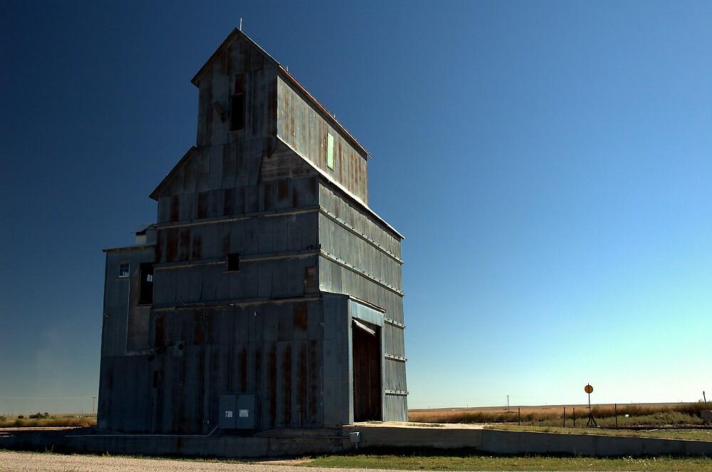 Old Arriba Grain Elevator by Scott Heinley