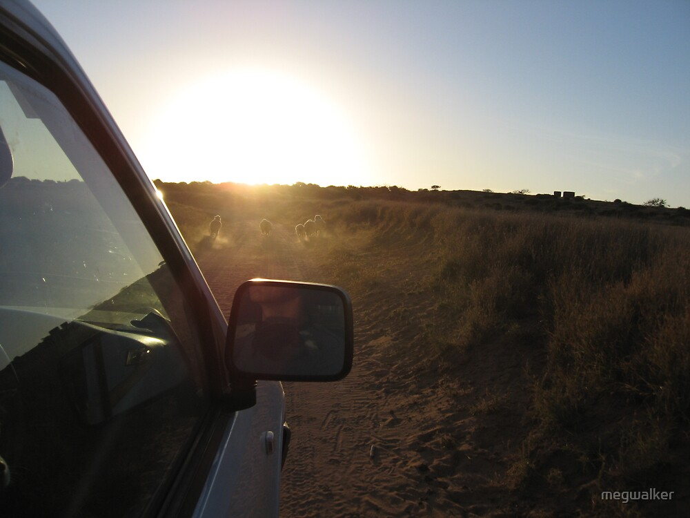 Driving in the outback by megwalker