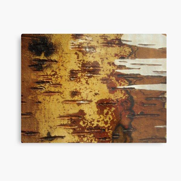 inside out white birch Metal Print