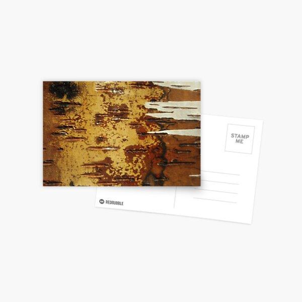 inside out white birch Postcard