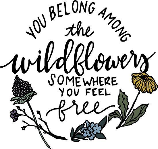 Unter den Wildblumen von Nancy Morgan