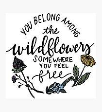 Among the Wildflowers Photographic Print
