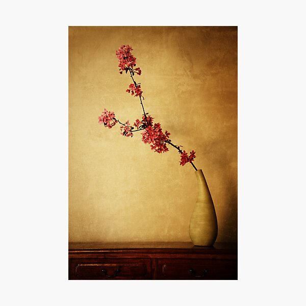 Spirit of Bushido Photographic Print